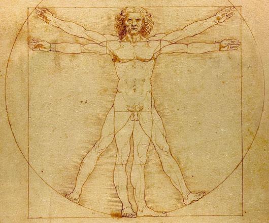 dessins-anatomique-1