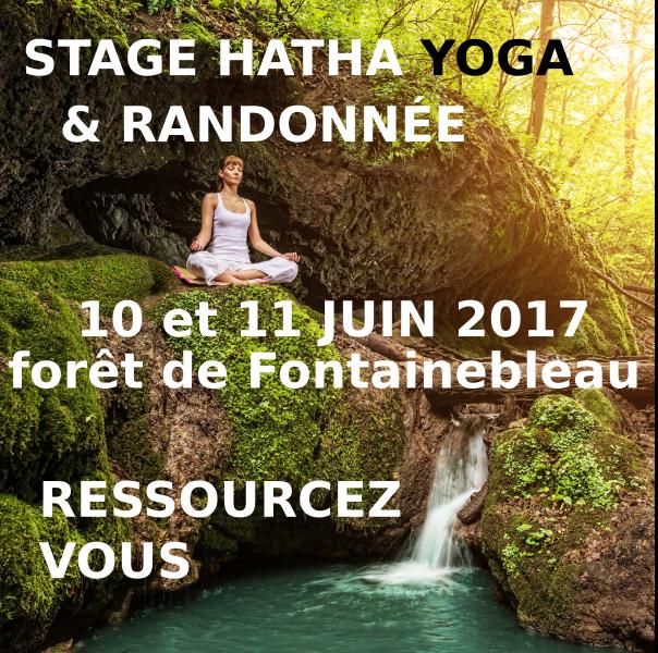 stage hatha yoga randonnée fontainebleau